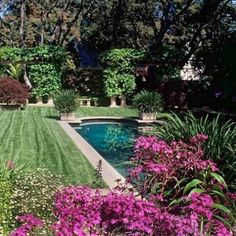 Pool bottom color