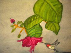 A HUMMING BIRD FEEDING Hummingbird, Bird Feeders, Art Work, Painting, Fictional Characters, Artwork, Work Of Art, Paintings, Hummingbirds