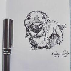 """126 curtidas, 11 comentários - Autoria: @altillierme_carlo (@desenhos_do_alti) no Instagram: """"Curioso Cão  #desenhosdoalti #desenhos #sketch #sketchers #sketchbook #art #artlovers #artbrazil…"""""""