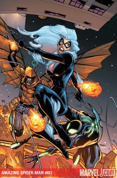 Amazing Spider-Man & Black Cat