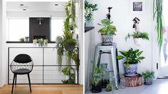 indoor-garden-2