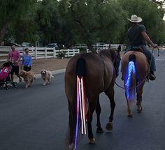 tail lights logo horses - Google zoeken