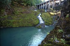 The grand experiment to tear down two dams and return an Olympic wilderness to its former glory. #elwhaexhibit opens Nov. 23 at the Burke!