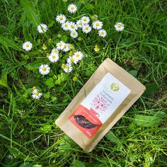 Zöld teák tesztje: az olcsó is lehet jó? - Dívány