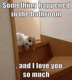Something happened in the bathroom..... and I love you soooo much. (afraid to look)