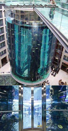Aquarium Elevator.