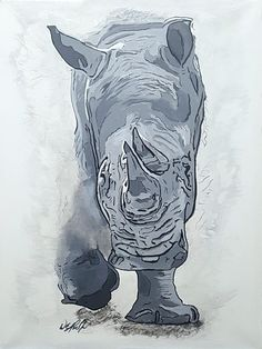 Created for my grandson, Zayen, to aid his efforts supporting the White Rhino preserve.
