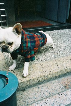 Flannel is never old.