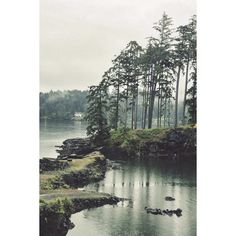 Tumblr ❤ liked on Polyvore featuring backgrounds, pictures, photos and pics