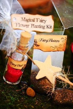 "Plant your own fairy garden..seeds, a little dirt, sprinkle with ""fairy dust"" and wave the magic wand!"