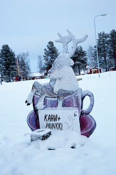 A snap shot of Lapland
