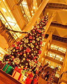 ランドマークツリー夜バージョン  #日本 #横浜 #クリスマス #冬 #夜 #風景 #イルミネーション #写真好きな人と繋がりたい #night #christmas #christmastree #nightview #nightscene #illmination #light #instagram #japan #landscape #igers #igersjp #igers #igersjp #photo #ig_japan #icu_japan #instagramers #photooftheday #picoftheday #insta #instagood
