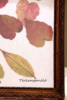 #autumn# #leaf#