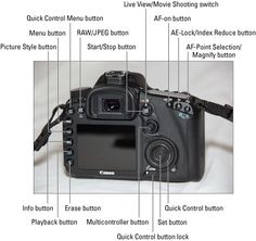 Canon EOS 7D For Dummies Cheat Sheet - For Dummies