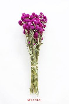 This natural purple globe amaranth gives your floral arrangement beautiful color and texture!