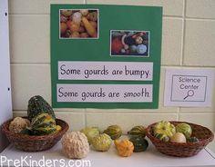 Gourds Science Center for preschool classrooms