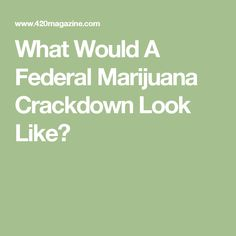 What Would A Federal Marijuana Crackdown Look Like?