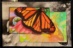 Monarch: About to Fly by Gloia Hansen, East Windsor, New Jersey