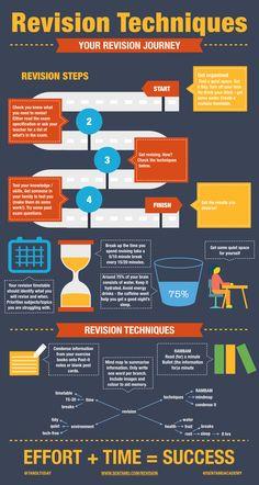Revision techniques infographic