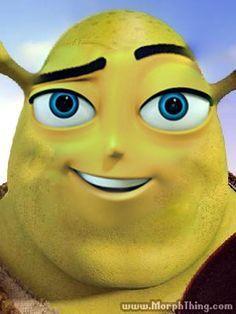 Shrek is love; Shrek is life; Shrek is coming with a knife Memes Humor, Shrek Memes, Really Funny Memes, Stupid Funny Memes, Haha Funny, Reaction Pictures, Funny Pictures, Fresh Memes, Oui Oui