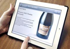 Contarini Applicazione Decks per iPad