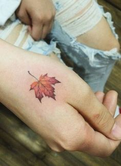 Maple Leaf Tat More