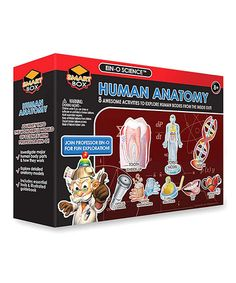 Another great find on #zulily! Human Anatomy Activity Kit #zulilyfinds