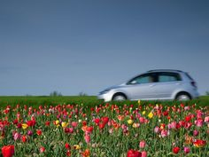 How to prepare your car for spring.