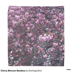 Cherry Blossom Bandana