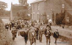 Hampshire History - the Royal Victoria Hospital