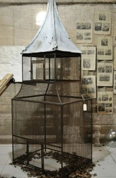 bird cage for Willy  in the solarium