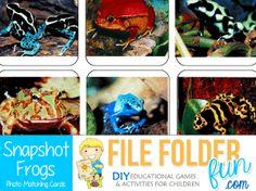 FrogsPhotoGame