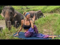 (45) Vinyasa Power Flow Class ♥ 20 Minute Yoga   Cambodia Wildlife Sanctuary - YouTube