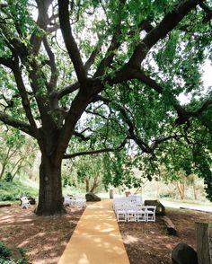 collingwood childrens farm www.eddixonfooddesign.com #weddingvenues #catering #weddings