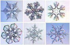 ... Diversos estudios indican que no hay dos copos de nieve iguales, todos son tan únicos y singulares como las personas. http://www.biorigenes.com/como-se-forman-los-copos-de-nieve/ http://ocadizdigital.es/curiosidades/as%C3%AD-se-forma-un-copo-de-nieve http://www.abc.es/ciencia/20140317/abci-verdad-copos-nieve-iguales-201403171213.html