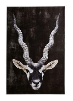 Drømmehytta i Hemsedal Giraffe, Moose Art, Animals, Photo Illustration, Animais, Animales, Animaux, Giraffes, Animal