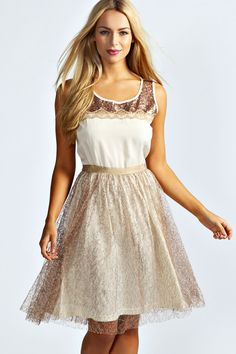Jayne Metallic Lace Sequin Trim Skater Dress at boohoo.com