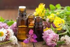 Resultado de imagen para aceites naturales para el cuerpo