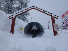 Myoko Snow Report - 31 January 2015. Conditions are continuing to be snowy here in Myoko, with 20cms of fresh snow that has fallen overnight.