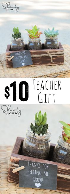 Teacher Gift idea-- www.shanty-2-chic.com Free plans and Free Printable Tags