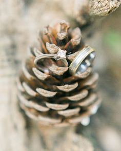 Fine Art Wedding Photography by Gizem Toker Engagement Rings