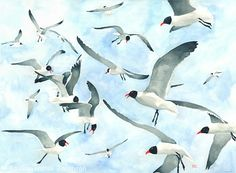 "Watercolor Painting ""Don't Feed the Seagulls"""