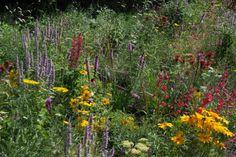 De Tuinen van Appeltern - De Biotope Garden - Natuurlijk en gezond