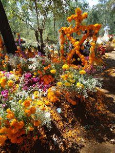 Ofrendas de Dia de Muertos en los cementerios de los alrededores del Lago de Pátzcuaro
