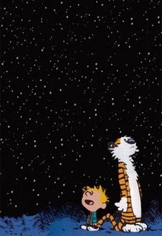 Calvin & Hobbes looking at the sky