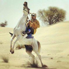 El príncipe de Dubai, Sheikh Hamdan, Emiratos Árabes Unidos.