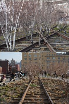 highline-park-nyc