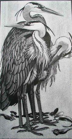 Siege of Herons ~ Wood Engraving ~ Colin See-Paynton ~ The Wildlife Art Gallery