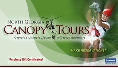 Georgia Zip Line Canopy Tour