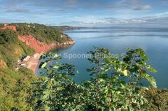 Greetings cards - Oddicombe Beach from Babbacombe Downs - Greetings Cards